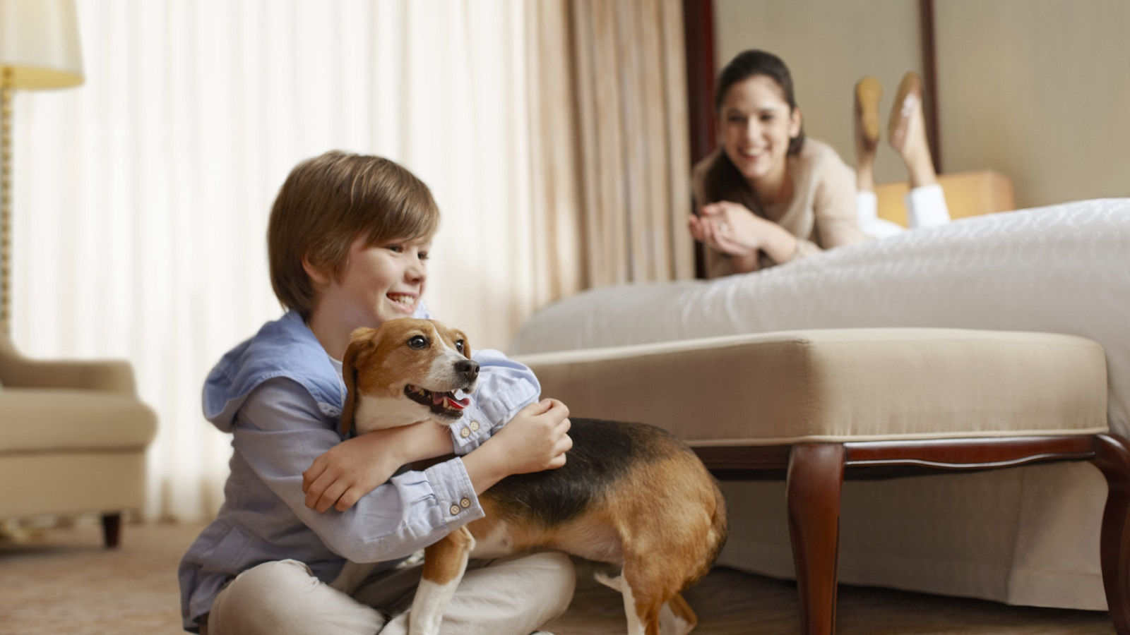Sheraton Bloomington is a pet friendly hotel in Bloomington MN